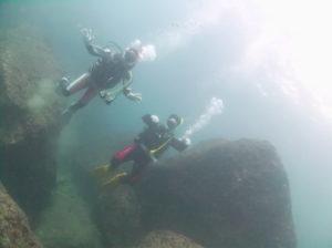 白崎、タテゴの海底