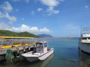 ボート (1)