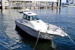 ボート (4)