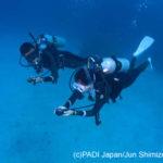 海洋実習(シナリオトレーニング)